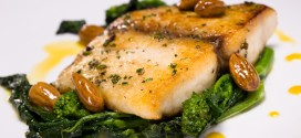 Cobia Fish: Dr. Oz Says It's The Next Salmon