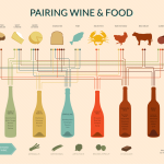 Become a Wine and Food Pairing Afficionado!