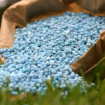 Chemical Fertilizer Shortages Will Force Transition to Organic Farming